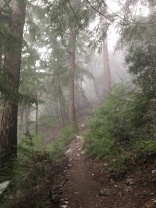 Misty Sturtevant Trail
