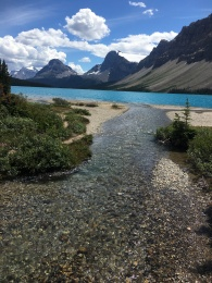 Bow Lake, Banff NP