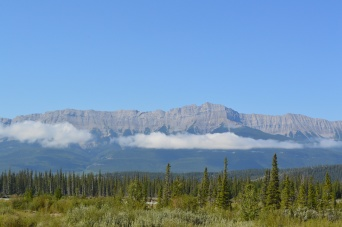 View from Athabasca River